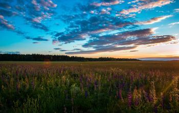 Green Meadows Near Mountain Under Calm Sky