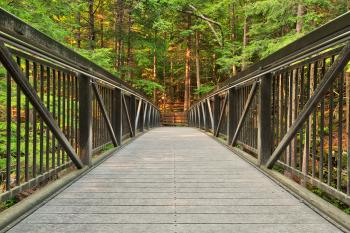 Green Mountain Forest Bridge - HDR