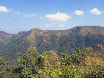 Green Mountain View