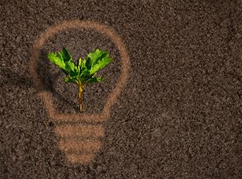 Green plant sprout growing within a lightbulb silhouette on soil