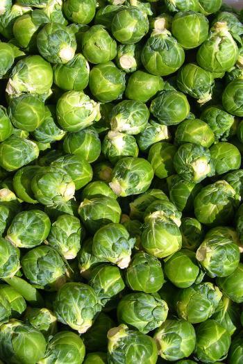 Vegetable Closeup