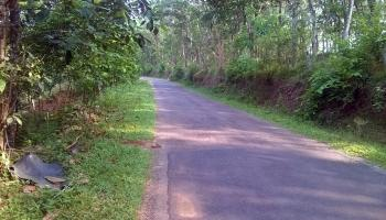 Green Village Road