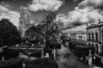 Greyscale Photo Of City