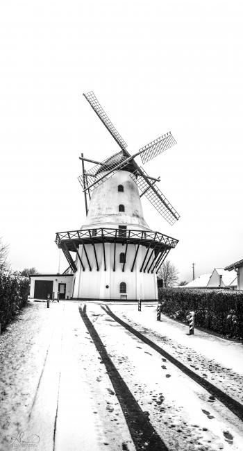 Greyscale Photo Of Windmill