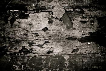 Grunge Cracked Paint