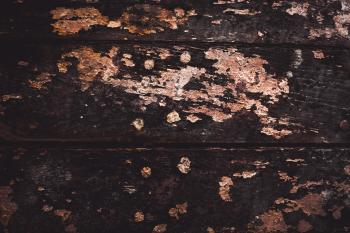Grunge Paint on Wood Texture
