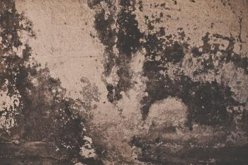Grunge Peeled Wall Texture