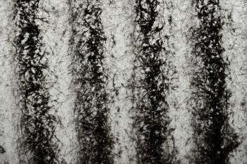 Grunge Texture