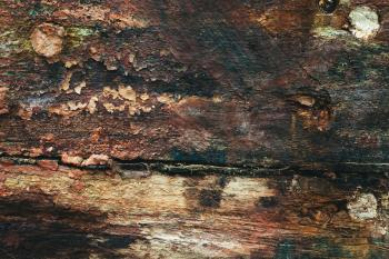Grungy Wood Surface