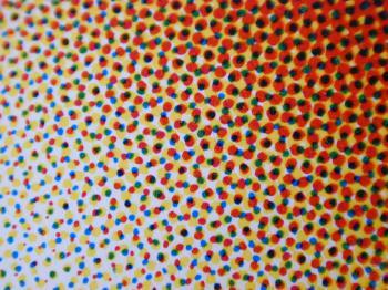 Halftone Dot Patternhalftone pattern