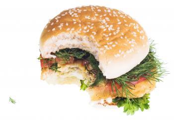 Hamburger with a bite