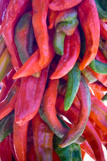 Hanging Chilies