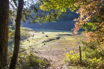 Hardesty Mountain Trail, Oregon, Autumn