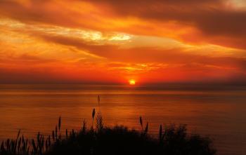 Hays Silhouette Near Ocean during Sunset