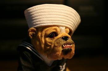 Hey sailor