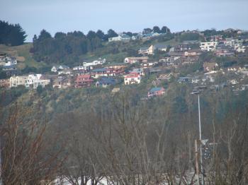 Hills of Dunedin