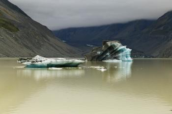 Hooker Lake and Icebergs