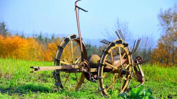 Horse Cart on Field Against Sky