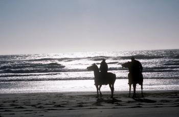 Horse Riding on the Shore