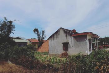 House Near Bushes