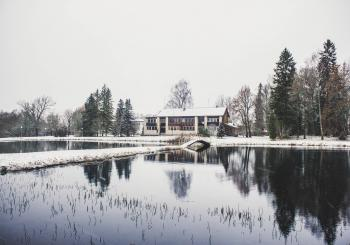 House Surrounding by Trees and Body of Water Photography