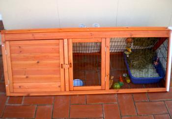 I bought a bunny hutch!