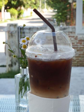 Iced Coffee in the Garden