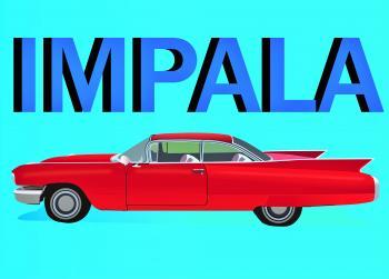 Impala Car