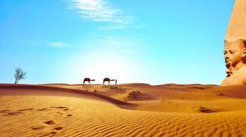 In Egypt