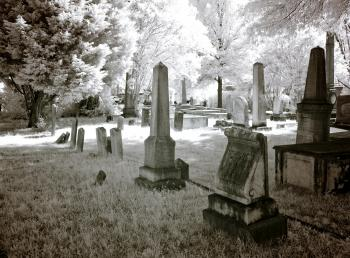 In the Cemetery