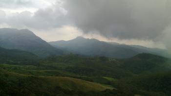 Indian Forest Landscape