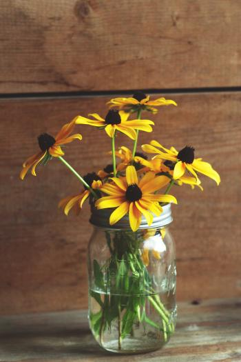 Jar of Sunflowers