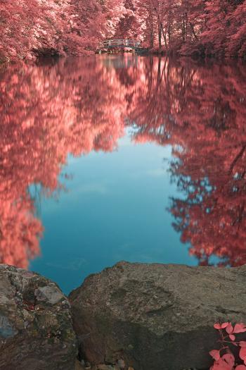 Jean-Drapeau Love Pond - HDR