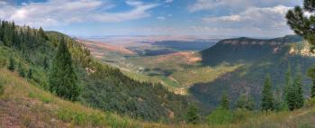 Kaibab Plateau Trail 101