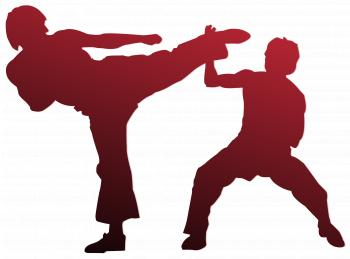 Karate Art