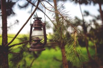 Kerosene lamp in the woods