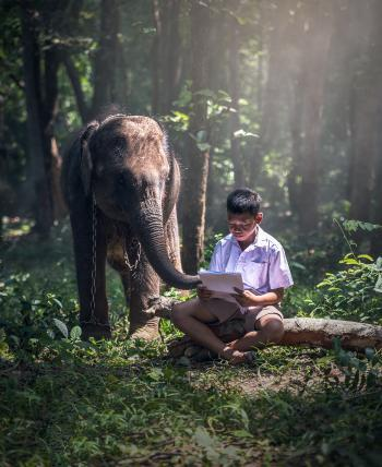 Kid with the Elephant