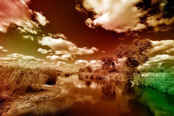Kruger Park Landscape - PhantasmaChrome