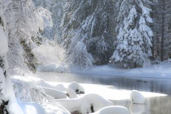 Lake Creek, Oregon, Bright Sun on Snow