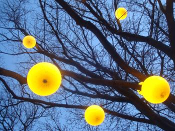 Lamps on a tree