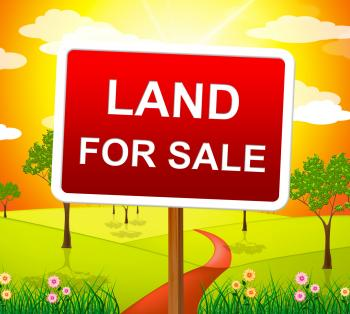Land For Sale Represents Real Estate Agent And Purchase