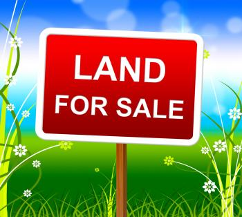 Land For Sale Shows Real Estate Agent And Selling