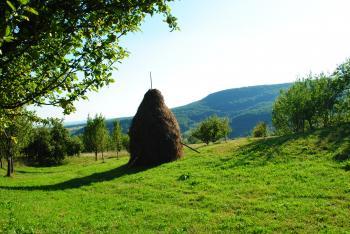 Landscape made in Transilvania
