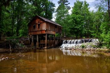 Landscape Photography of Brown Wooden House on Forest Near River
