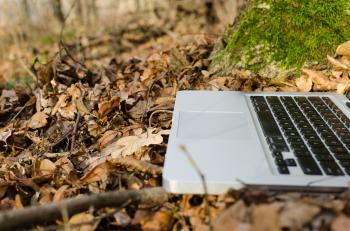 Laptop Closeup in Forest