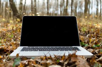 Laptop with Black Screen on Forest Floor