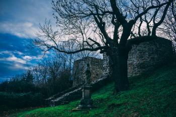 Leafless Tree Beside Gray Concrete Statue