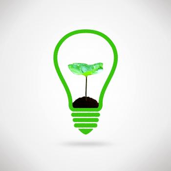 Lightbulb and plant sprout - Ecology and environment idea