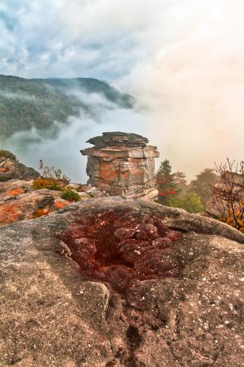 Lindy Point Fog Fantasy
