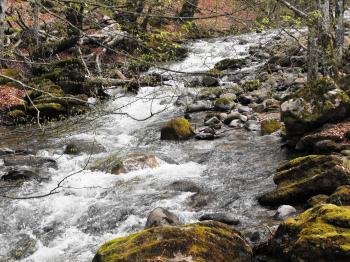 Little spring river